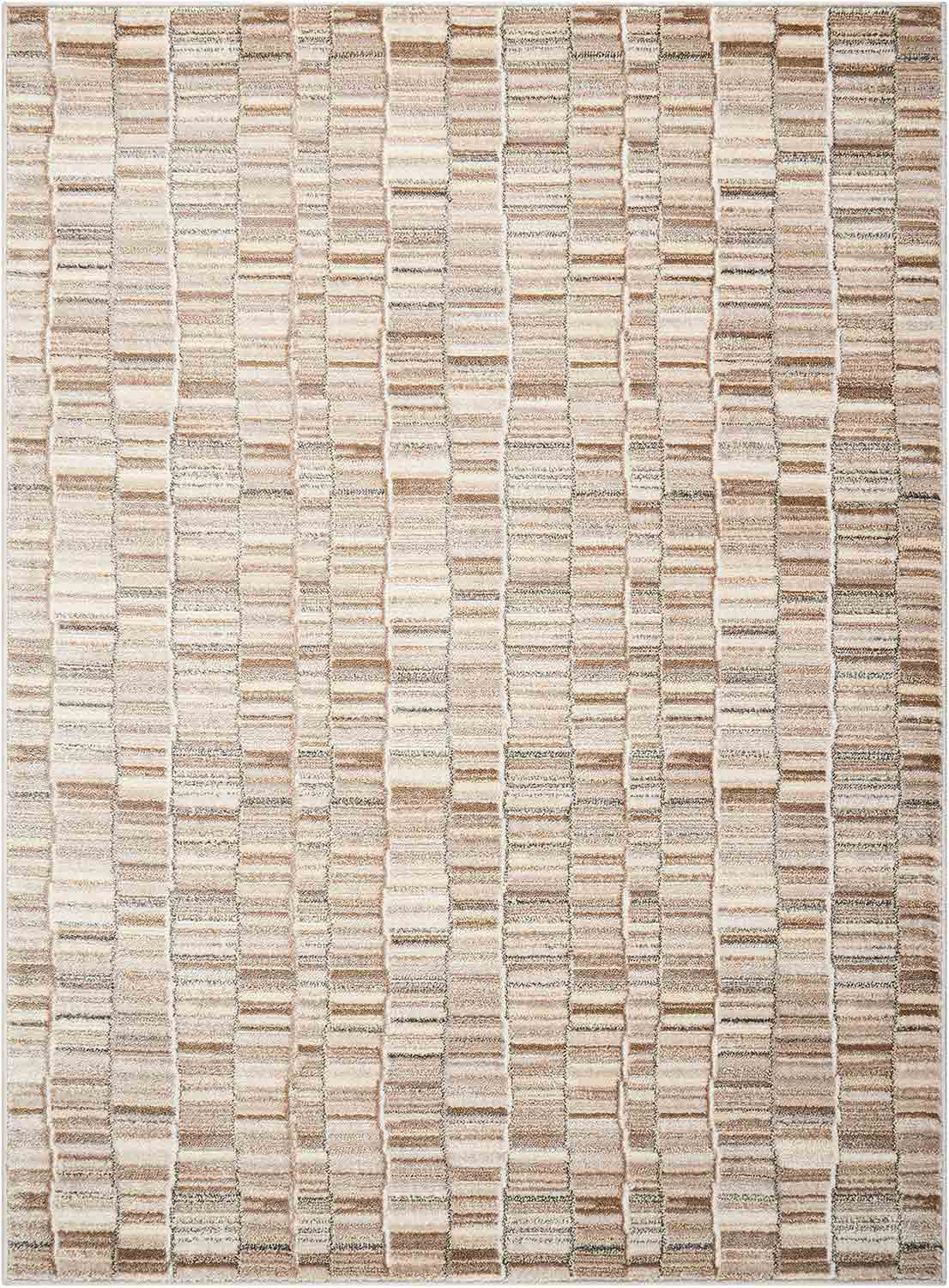 Coaster 970225 Small Rug - Multi-Tonal Neutrals