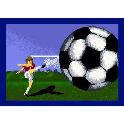 Joy Carpet Soccer Mat