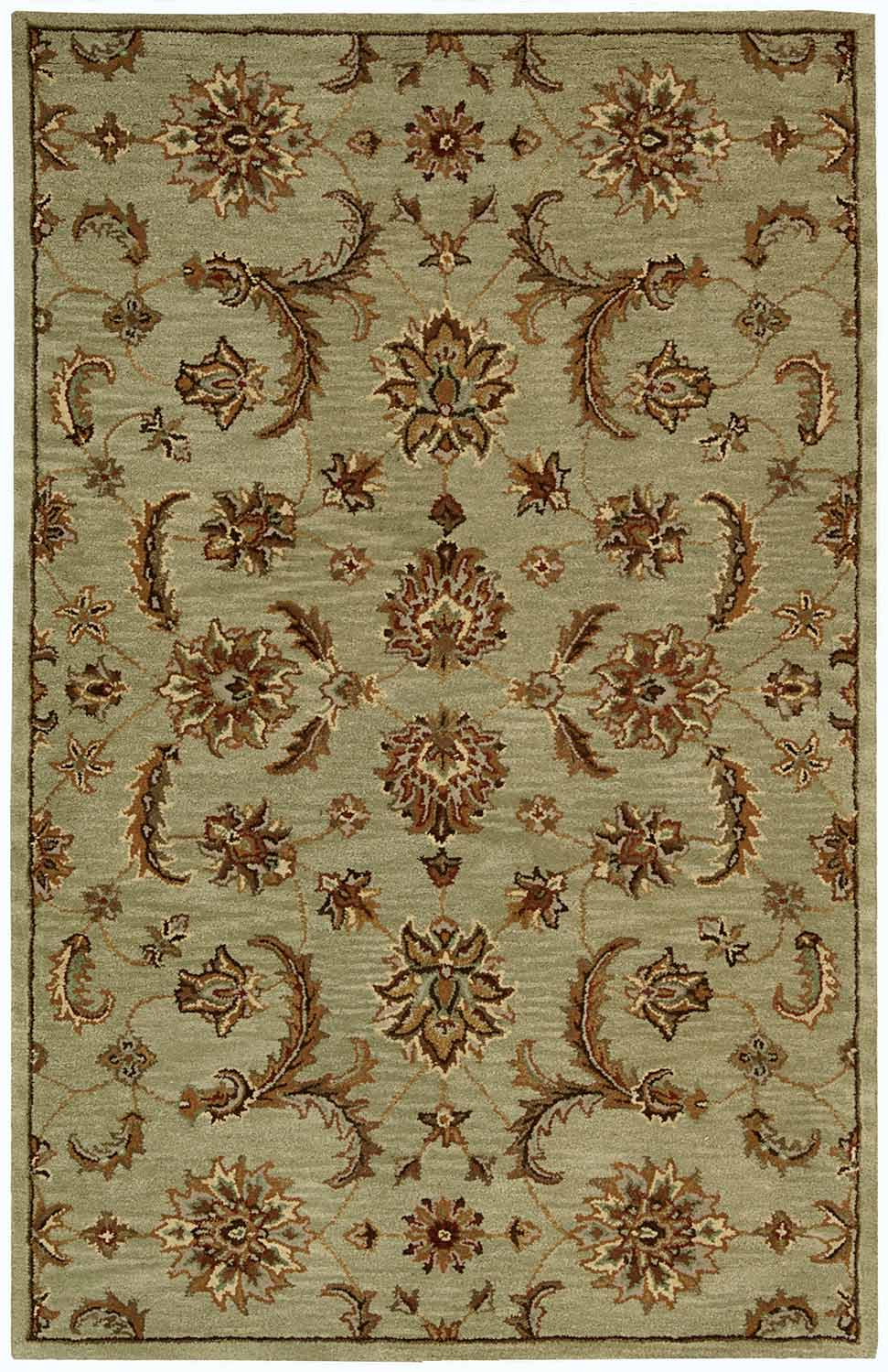 Nourison India House IH83 Light Green Area Rug