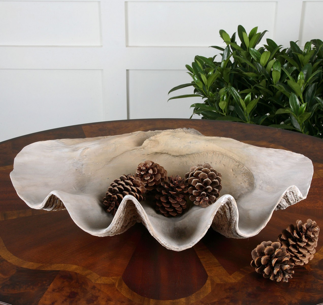 Uttermost Clam Shell Bowl
