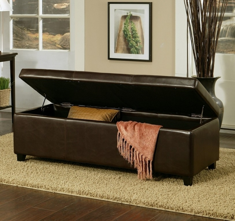 Franfurt Dark Brown Leather Storage Ottoman - Abbyson Living