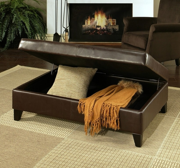 Franfurt Dark Brown Leather Storage Flip-Top Ottoman