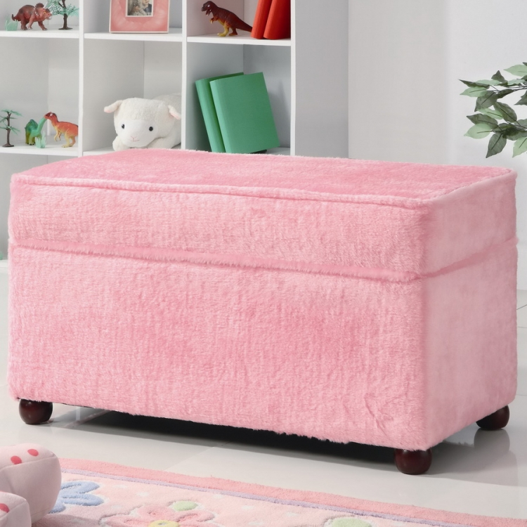 460451 Youth Storage Bench