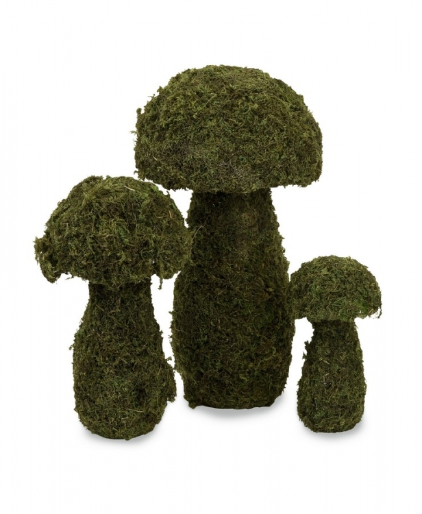 Mossy Mushrooms - Set of 3 - IMAX