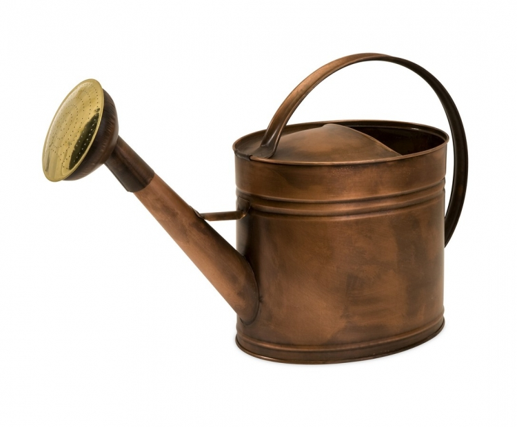 Tauba Large Oval Copper Watering Can