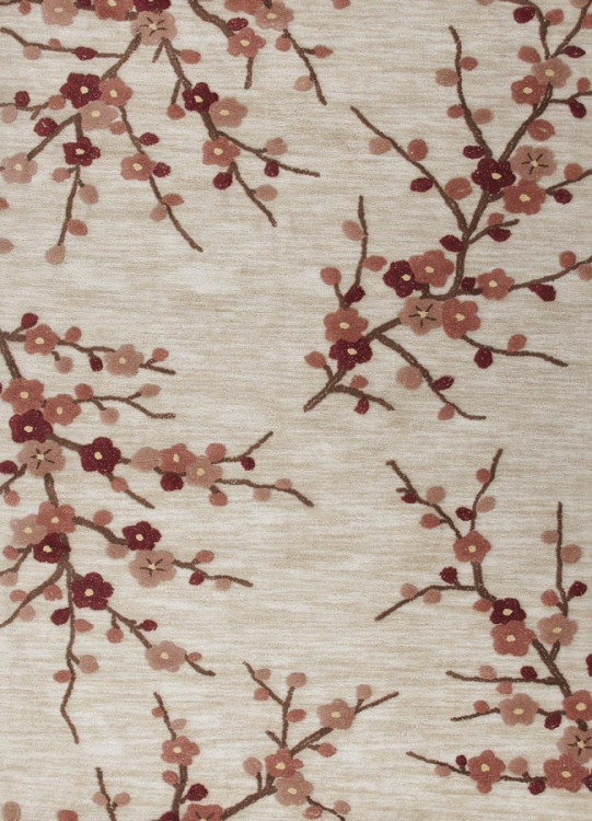 Brio Cherry Blossom BR02 Colorado Clay Area Rug