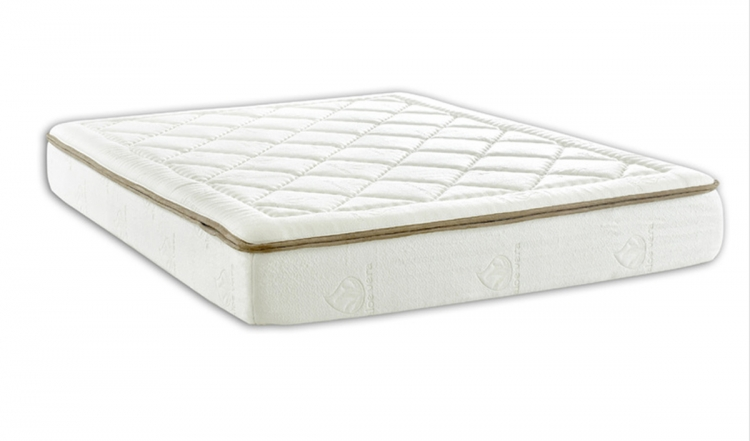 Dream Weaver 10-Inch King Mattress Memory Foam