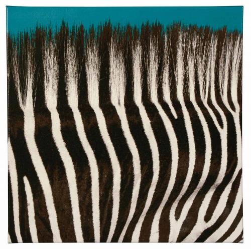 Jabbar Wall Art - Black/White/Teal