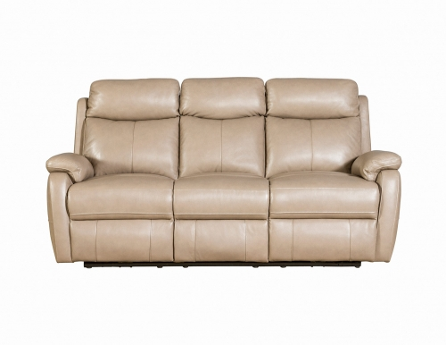 Brockton Power Reclining Sofa with Power Head Rests - Gable Twine/Leather Match