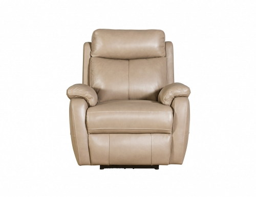 Brockton Power Recliner Chair with Power Head Rest - Gable Twine/Leather Match