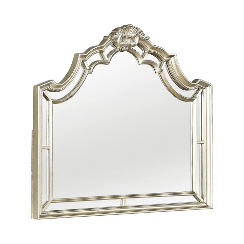 Heidi Mirror - Metallic Platinum