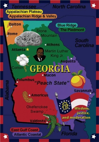 State the Fact - Georgia