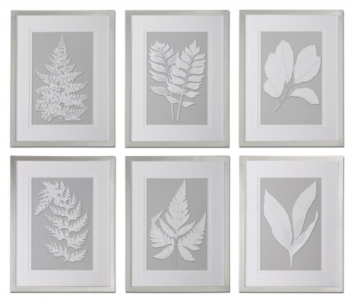 Moonlight Ferns Framed Art - Set of 6