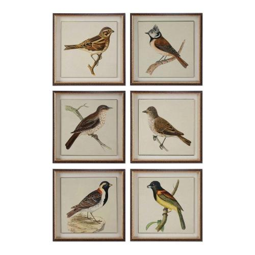 Spring Soldiers Bird Prints - Set of 6