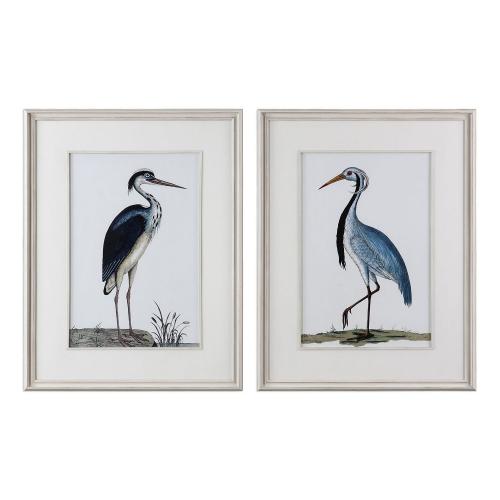 Shore Birds Framed Prints - Set of 2