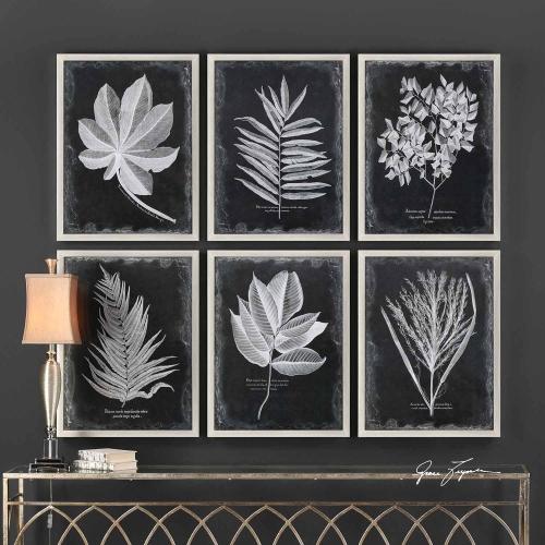 Foliage Framed Prints - Set of 6