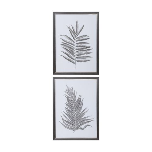 Silver Ferns Framed Prints - Set of 2