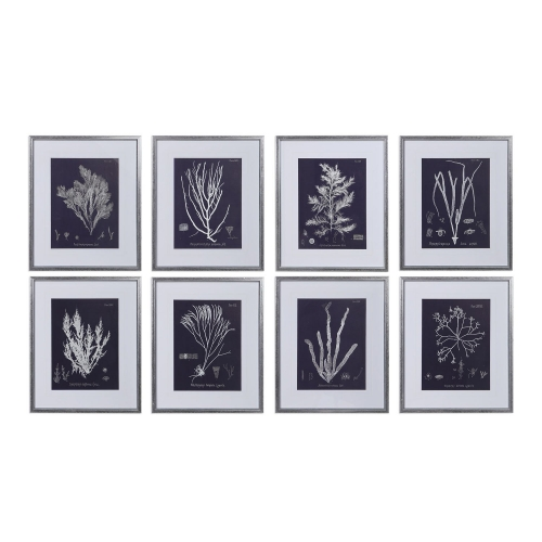 Coral On Navy Framed Prints Set/8