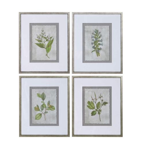 Stem Study Framed Prints - Set of 4