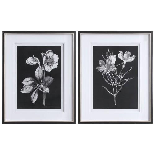 Black and White Flowers Framed Prints - Set of 2