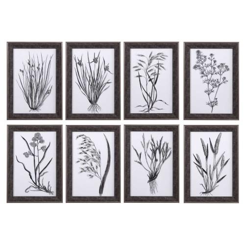 Classic Botany Framed Prints - Set of 8