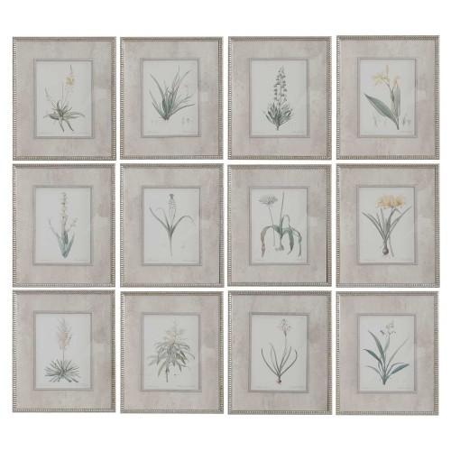 Spring Florals Framed Prints - Set of 12