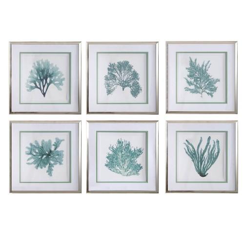 Coral Reef Framed Prints - Set of 6