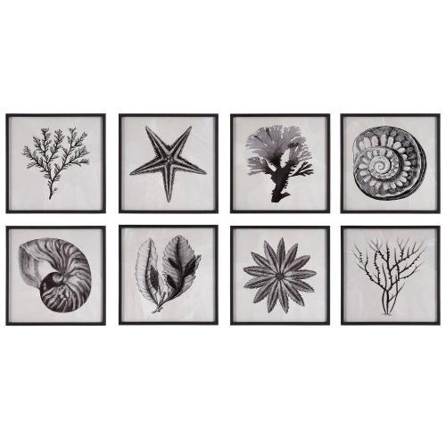 Sea Living Framed Prints - Set of 8