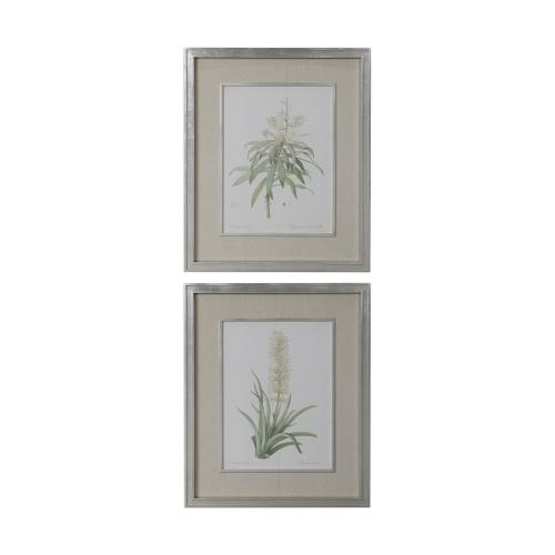 Plant Study Framed Prints - Set of 2