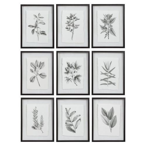 Farmhouse Florals Framed Prints - Set of 9