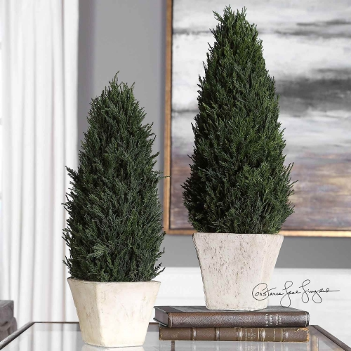 Cypress Cone Topiaries - Set of 2