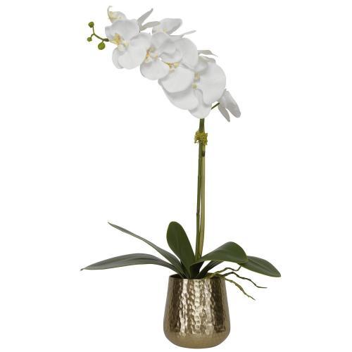 Cami Orchid Pot - Brass