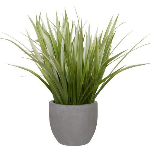 Dracaena Grass Planter - Gray